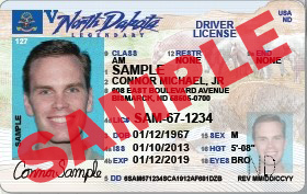 Regular Drivers License