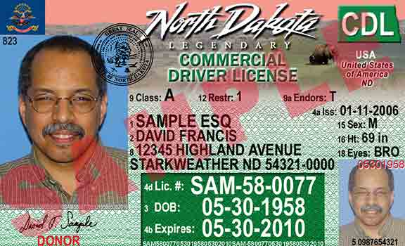 Driver License Number New Jersey