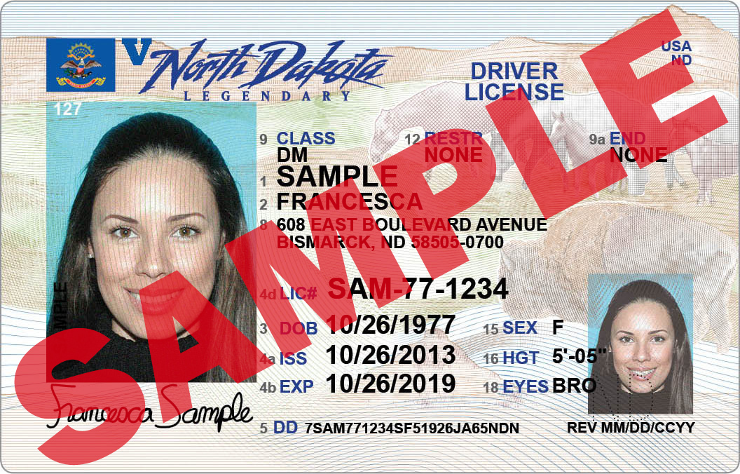 Regular Driver License 2014