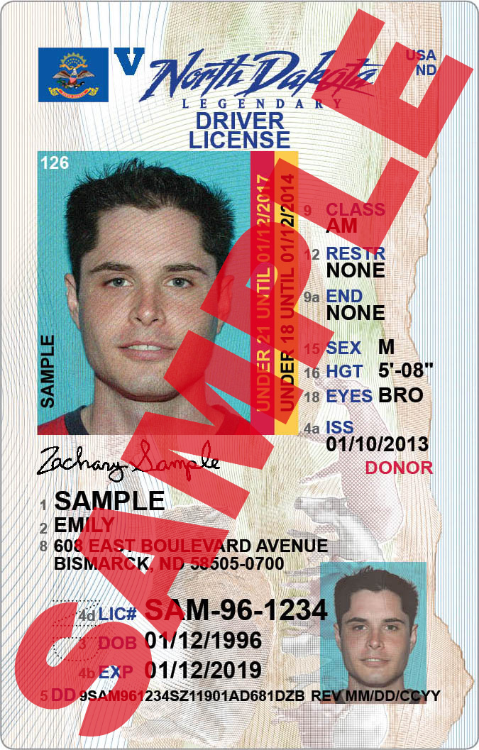 Driver license for under 21