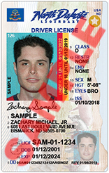 Driver license for under 18