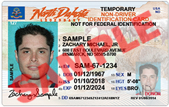 Non-driver Identification Card