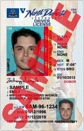 Limited Term Driver License Under 21?