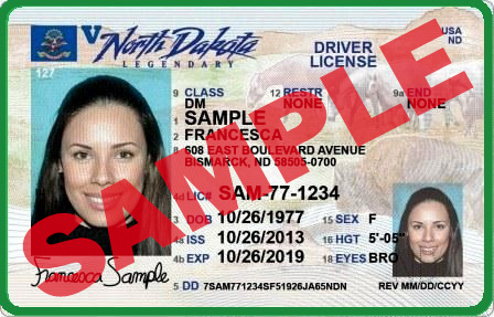 Regular North Dakota Drivers License
