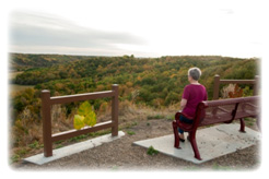 Tetrault Woods Overlook